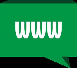 Profi webshopo készítes önnek